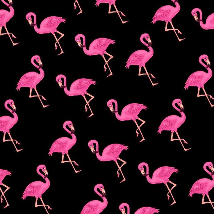 Pink Flamingo Gift Wrap-Black Background-Handmade Gift Company