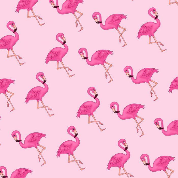 Pink Flamingo Gift Wrap-Handmade Gift Company