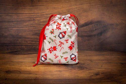 Christmas Gift Bag-Santa & Penguins